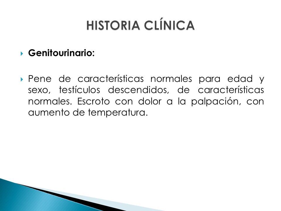 Genitourinario: Pene de características normales para edad y sexo, testículos descendidos, de características normales.