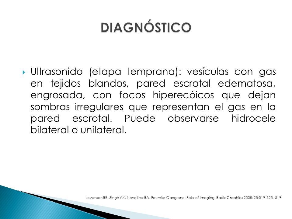 Ultrasonido (etapa temprana): vesículas con gas en tejidos blandos, pared escrotal edematosa, engrosada, con focos hiperecóicos que dejan sombras irregulares que representan el gas en la pared escrotal.