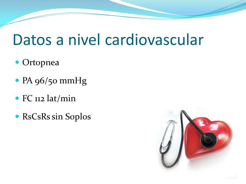 Datos a nivel cardiovascular Ortopnea PA 96/50 mmHg FC 112 lat/min RsCsRs sin Soplos