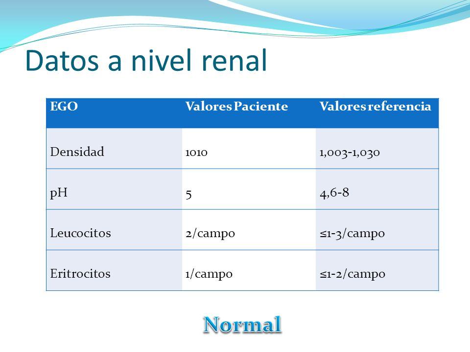 Datos a nivel renal EGOValores PacienteValores referencia Densidad10101,003-1,030 pH54,6-8 Leucocitos2/campo1-3/campo Eritrocitos1/campo1-2/campo