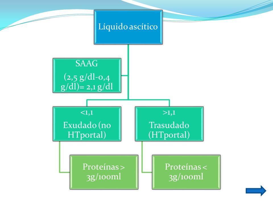 Líquido ascítico <1,1 Exudado (no HTportal) Proteínas > 3g/100ml >1,1 Trasudado (HTportal) Proteínas < 3g/100ml SAAG (2,5 g/dl-0,4 g/dl)= 2,1 g/dl