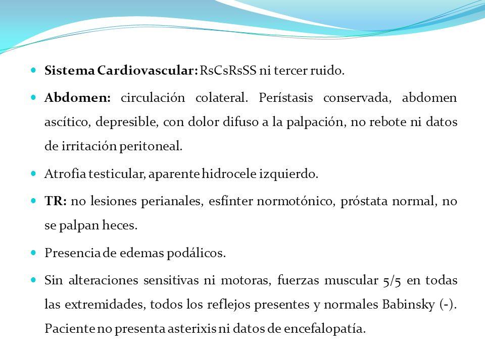 Sistema Cardiovascular: RsCsRsSS ni tercer ruido. Abdomen: circulación colateral. Perístasis conservada, abdomen ascítico, depresible, con dolor difus
