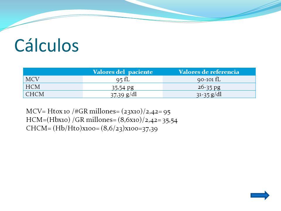 Cálculos Valores del pacienteValores de referencia MCV95 fL90-101 fL HCM35,54 pg26-35 pg CHCM 37,39 g/dl31-35 g/dl MCV= Htox 10 /#GR millones= (23x10)