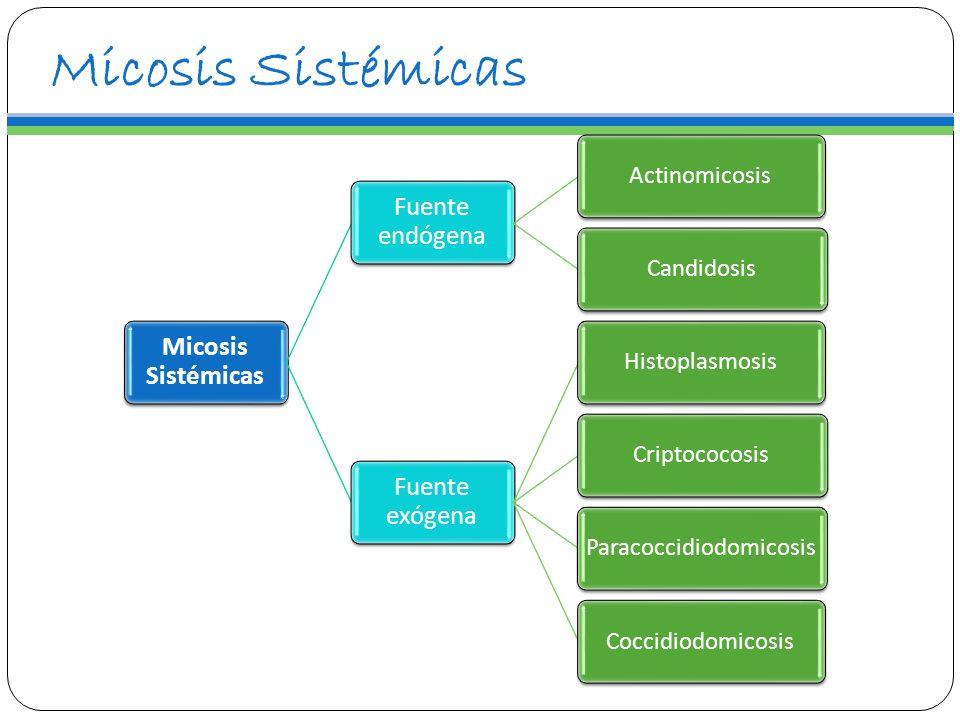 Micosis Sistémicas Fuente endógena ActinomicosisCandidosis Fuente exógena HistoplasmosisCriptococosisParacoccidiodomicosisCoccidiodomicosis