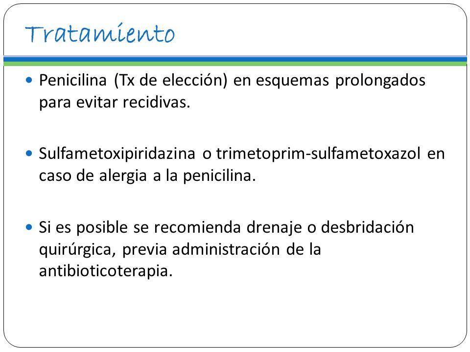 Tratamiento Penicilina (Tx de elección) en esquemas prolongados para evitar recidivas. Sulfametoxipiridazina o trimetoprim-sulfametoxazol en caso de a