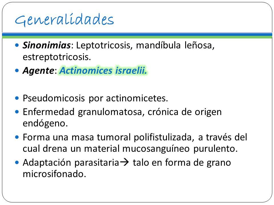 Prevención Control de la diabetes Curación de la pareja en formas genitales.