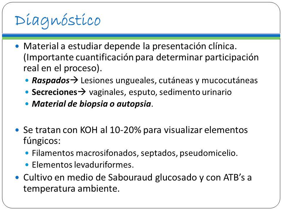Diagnóstico Material a estudiar depende la presentación clínica. (Importante cuantificación para determinar participación real en el proceso). Raspado