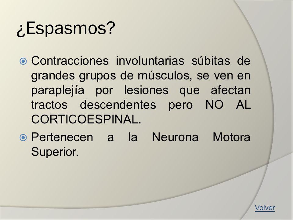 ¿Espasmos? Contracciones involuntarias súbitas de grandes grupos de músculos, se ven en paraplejía por lesiones que afectan tractos descendentes pero