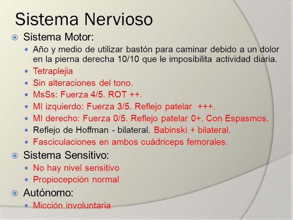 Sistema Nervioso Sistema Motor: Año y medio de utilizar bastón para caminar debido a un dolor en la pierna derecha 10/10 que le imposibilita actividad