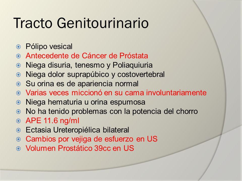 Tracto Genitourinario Pólipo vesical Antecedente de Cáncer de Próstata Niega disuria, tenesmo y Poliaquiuria Niega dolor suprapúbico y costovertebral