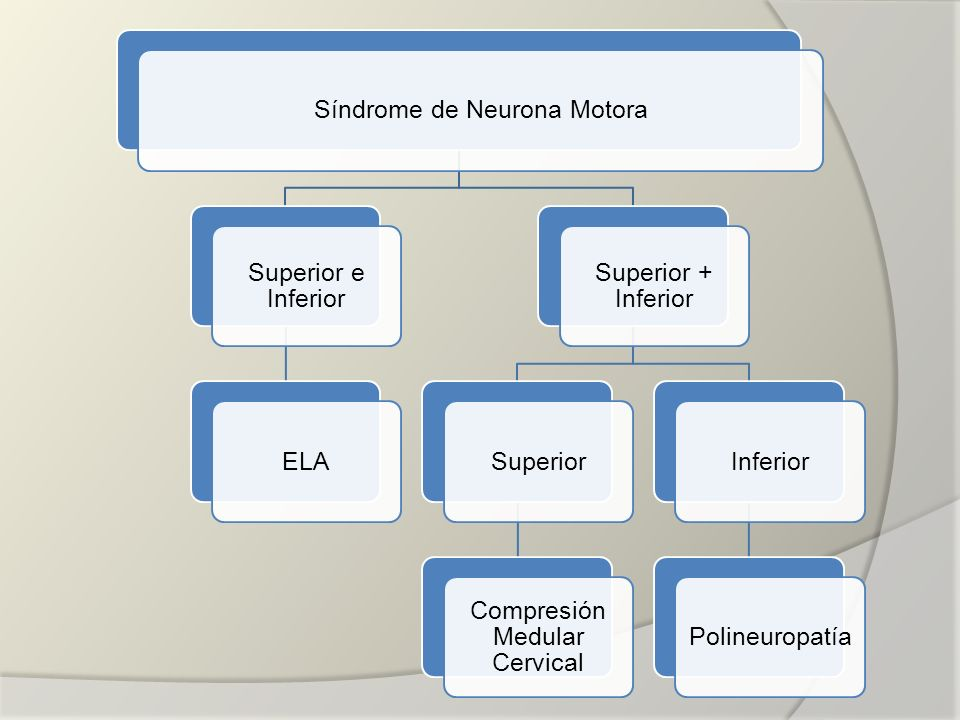 Síndrome de Neurona Motora Superior e Inferior ELA Superior + Inferior Superior Compresión Medular Cervical InferiorPolineuropatía