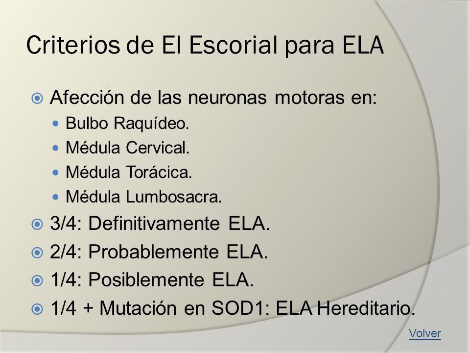 Criterios de El Escorial para ELA Afección de las neuronas motoras en: Bulbo Raquídeo. Médula Cervical. Médula Torácica. Médula Lumbosacra. 3/4: Defin