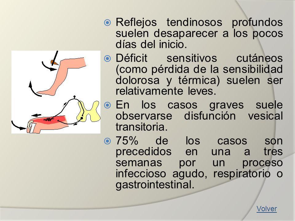 Reflejos tendinosos profundos suelen desaparecer a los pocos días del inicio. Déficit sensitivos cutáneos (como pérdida de la sensibilidad dolorosa y