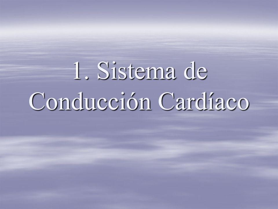 1. Sistema de Conducción Cardíaco