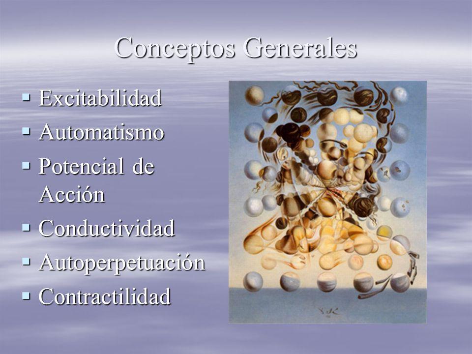 Conceptos Generales Excitabilidad Excitabilidad Automatismo Automatismo Potencial de Acción Potencial de Acción Conductividad Conductividad Autoperpetuación Autoperpetuación Contractilidad Contractilidad