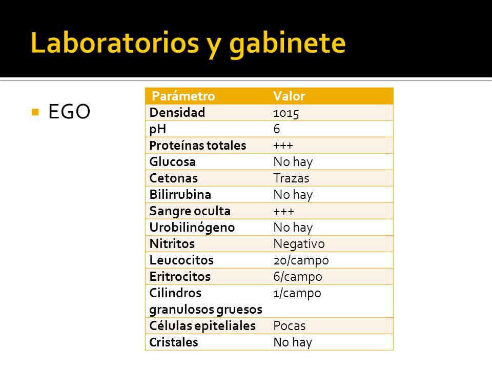 EGO ParámetroValor Densidad1015 pH6 Proteínas totales+++ GlucosaNo hay CetonasTrazas BilirrubinaNo hay Sangre oculta+++ UrobilinógenoNo hay NitritosNe