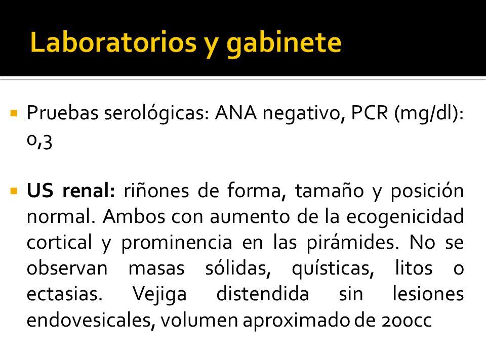 Pruebas serológicas: ANA negativo, PCR (mg/dl): 0,3 US renal: riñones de forma, tamaño y posición normal. Ambos con aumento de la ecogenicidad cortica