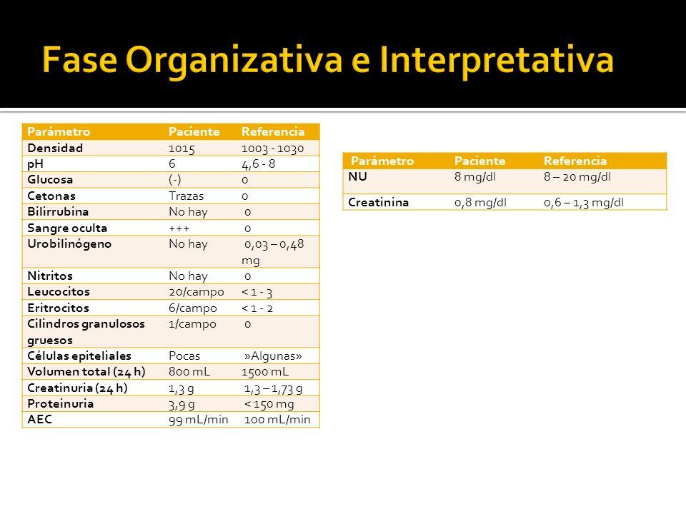 ParámetroPacienteReferencia Densidad10151003 - 1030 pH64,6 - 8 Glucosa(-)0 CetonasTrazas0 BilirrubinaNo hay 0 Sangre oculta+++ 0 UrobilinógenoNo hay 0