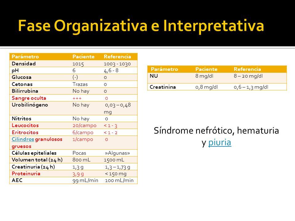 ParámetroPacienteReferencia Densidad10151003 - 1030 pH64,6 - 8 Glucosa(-)0 CetonasTrazas0 BilirrubinaNo hay0 Sangre oculta+++ 0 UrobilinógenoNo hay 0,