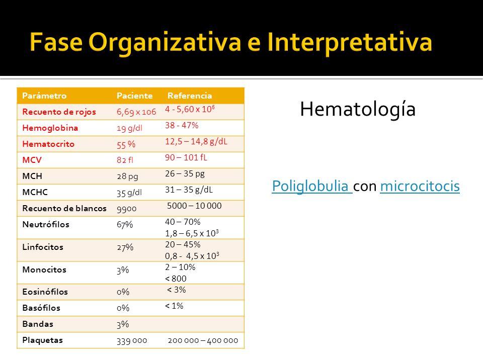 ParámetroPacienteReferencia Recuento de rojos6,69 x 106 4 - 5,60 x 10 6 Hemoglobina19 g/dl 38 - 47% Hematocrito55 % 12,5 – 14,8 g/dL MCV82 fl 90 – 101