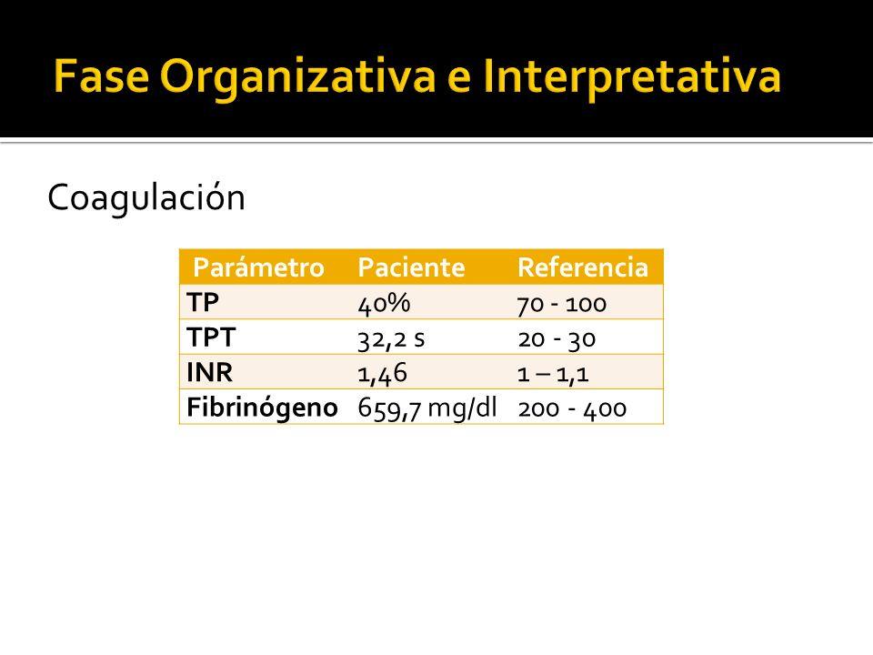 ParámetroPacienteReferencia TP40%70 - 100 TPT32,2 s20 - 30 INR1,461 – 1,1 Fibrinógeno659,7 mg/dl200 - 400 Coagulación