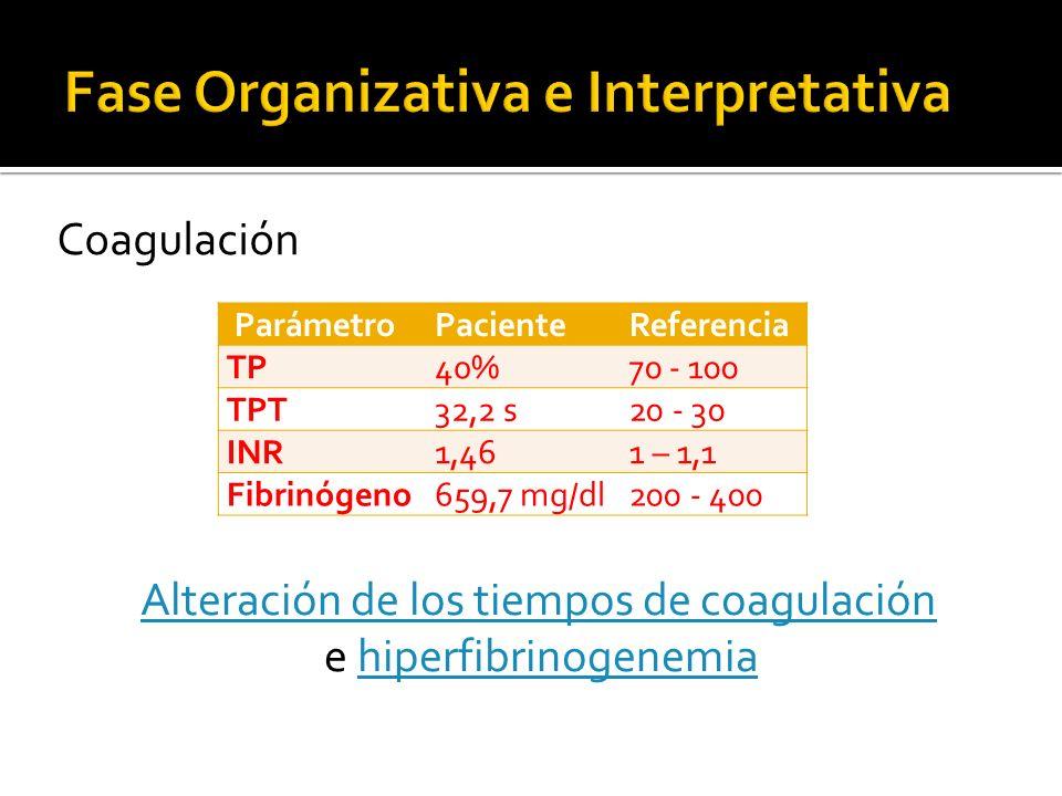 ParámetroPacienteReferencia TP40%70 - 100 TPT32,2 s20 - 30 INR1,461 – 1,1 Fibrinógeno659,7 mg/dl200 - 400 Coagulación Alteración de los tiempos de coa