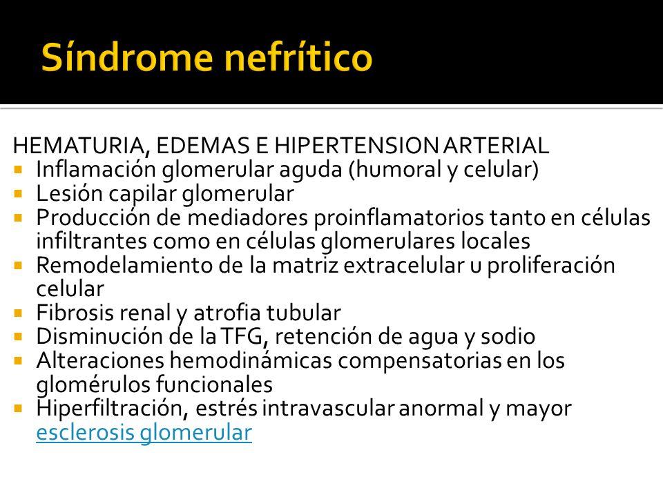 HEMATURIA, EDEMAS E HIPERTENSION ARTERIAL Inflamación glomerular aguda (humoral y celular) Lesión capilar glomerular Producción de mediadores proinfla