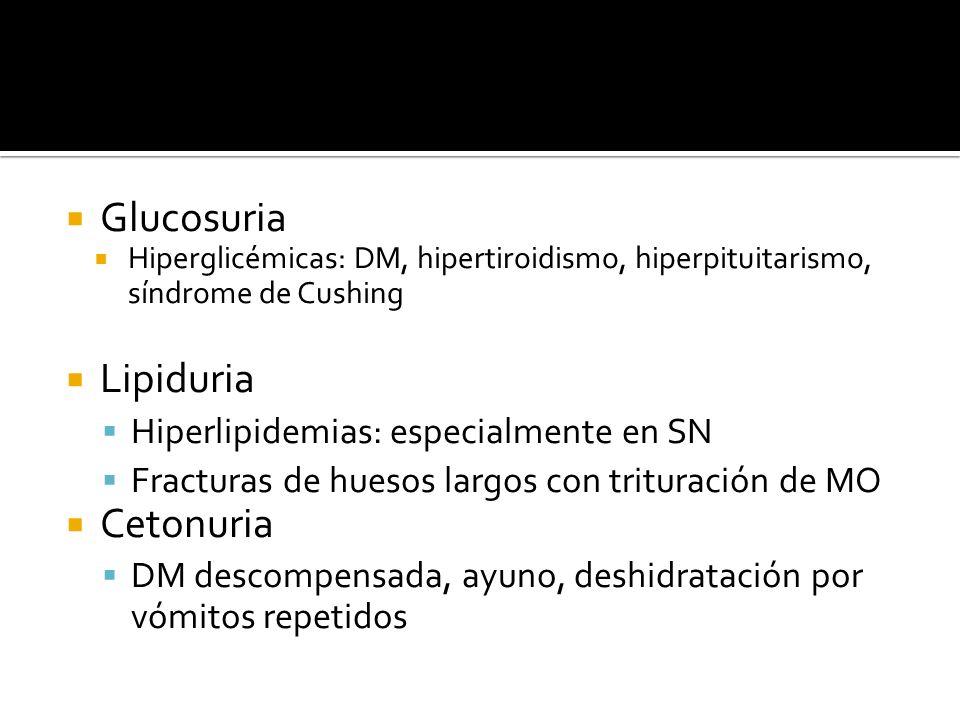 Glucosuria Hiperglicémicas: DM, hipertiroidismo, hiperpituitarismo, síndrome de Cushing Lipiduria Hiperlipidemias: especialmente en SN Fracturas de hu