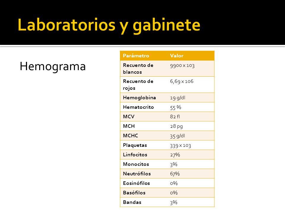 Química sanguínea ParámetroValor NU8 mg/dl Creatinina0,8 mg/dl Proteínas totales3,9 g/dl Albúmina1,2 g/dl Globulinas2,7 g/dl Sodio134 mmol/l Potasio4,1 mmol/l Cloruro106 mmol/l Calcio8 mmol/l Colesterol318 mg/dl Triglicéridos112 mg/dl Colesterol/HDL6 HDL56 mg/dl LDL234,6 mg/dl Bilirrubina total0,8 mg/dl Bilirrubina directa0,1 mg/dl Bilirrubina indirecta0,66 mg/dl AST58 UI/l ALT53 UI/l FA54 UI/l