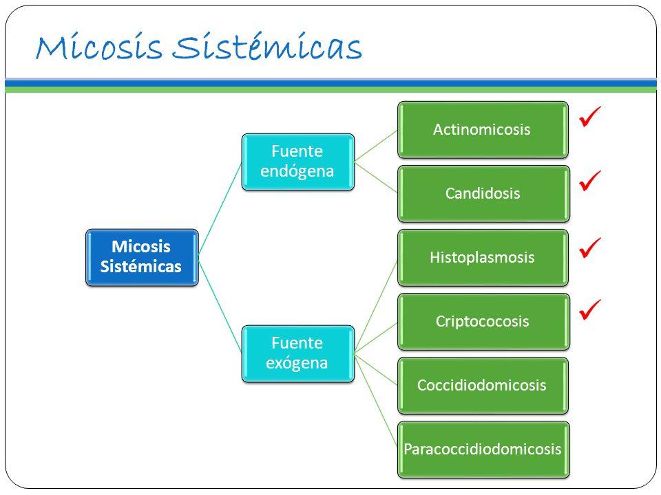 Micosis Sistémicas Fuente endógena ActinomicosisCandidosis Fuente exógena HistoplasmosisCriptococosisCoccidiodomicosisParacoccidiodomicosis