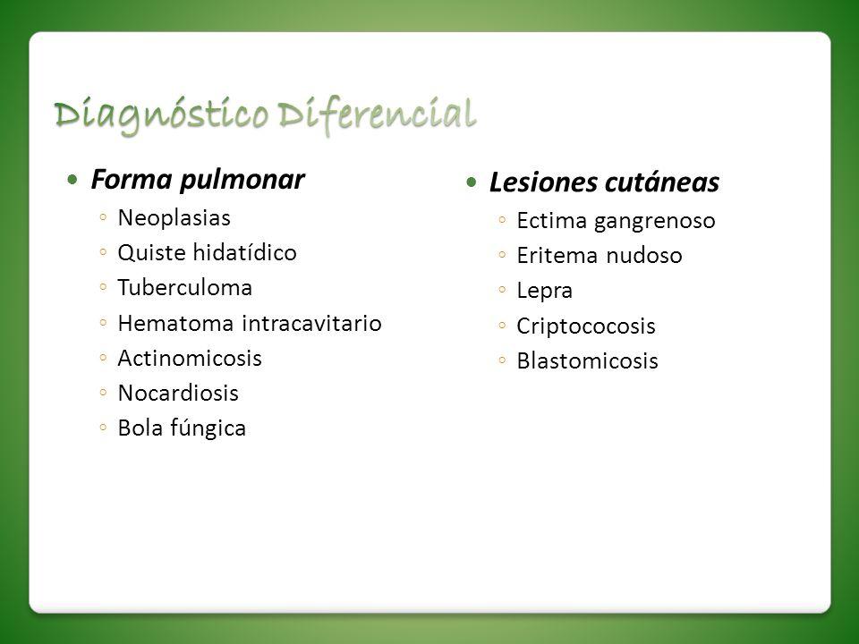 Forma pulmonar Neoplasias Quiste hidatídico Tuberculoma Hematoma intracavitario Actinomicosis Nocardiosis Bola fúngica Lesiones cutáneas Ectima gangre