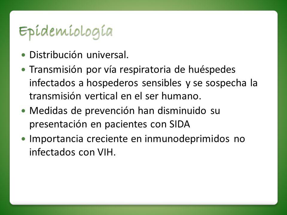 Distribución universal. Transmisión por vía respiratoria de huéspedes infectados a hospederos sensibles y se sospecha la transmisión vertical en el se