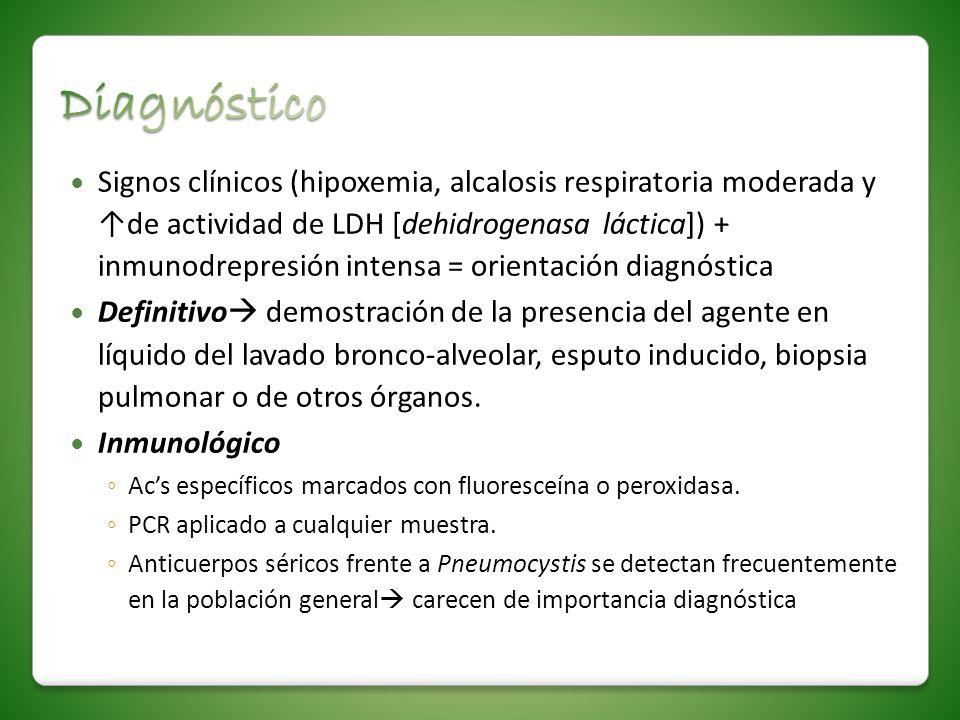 Signos clínicos (hipoxemia, alcalosis respiratoria moderada y de actividad de LDH [dehidrogenasa láctica]) + inmunodrepresión intensa = orientación di