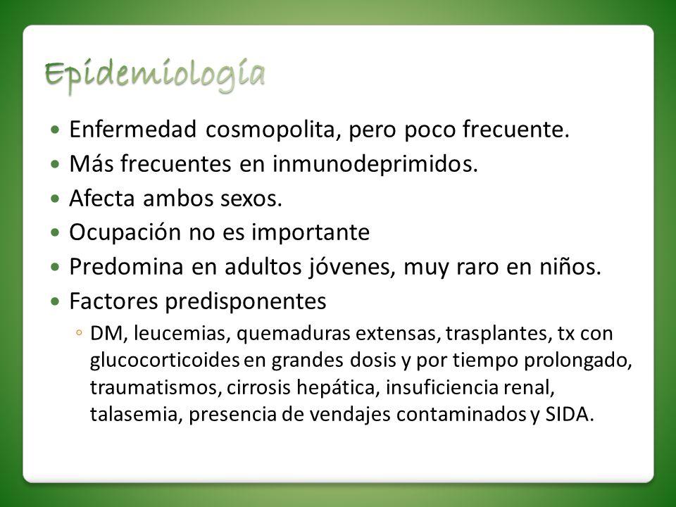 Enfermedad cosmopolita, pero poco frecuente. Más frecuentes en inmunodeprimidos. Afecta ambos sexos. Ocupación no es importante Predomina en adultos j