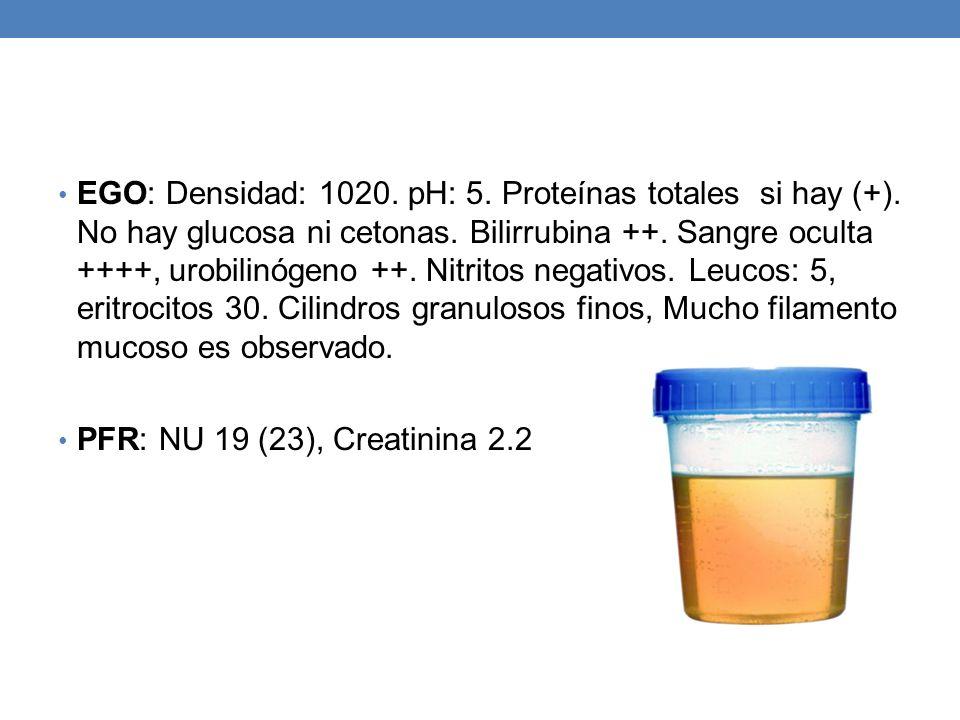 EGO: Densidad: 1020. pH: 5. Proteínas totales si hay (+). No hay glucosa ni cetonas. Bilirrubina ++. Sangre oculta ++++, urobilinógeno ++. Nitritos ne