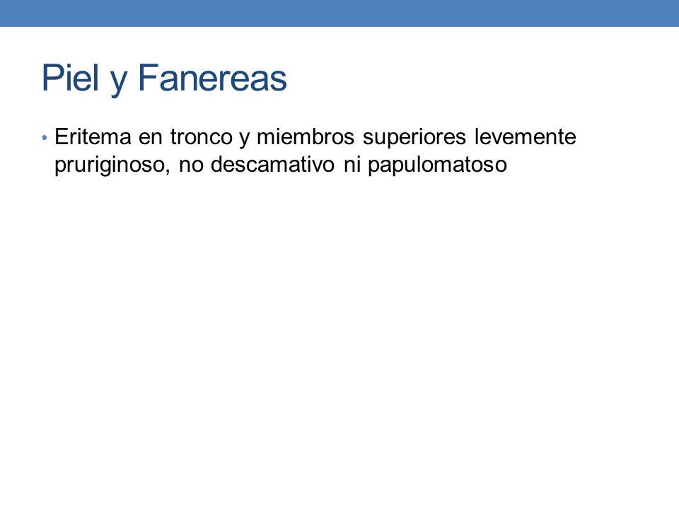 Piel y Fanereas Eritema en tronco y miembros superiores levemente pruriginoso, no descamativo ni papulomatoso