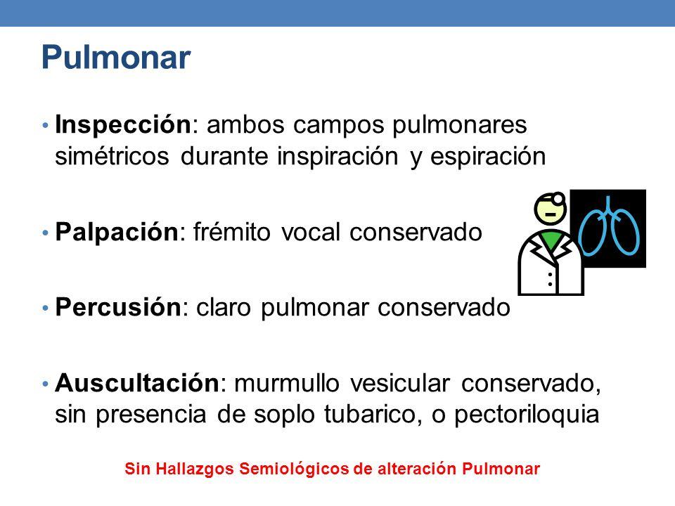Pulmonar Inspección: ambos campos pulmonares simétricos durante inspiración y espiración Palpación: frémito vocal conservado Percusión: claro pulmonar