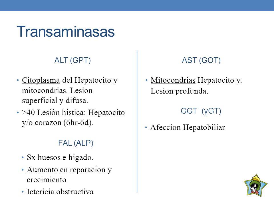 Transaminasas ALT (GPT) Citoplasma del Hepatocito y mitocondrias. Lesion superficial y difusa. >40 Lesión hística: Hepatocito y/o corazon (6hr-6d). AS