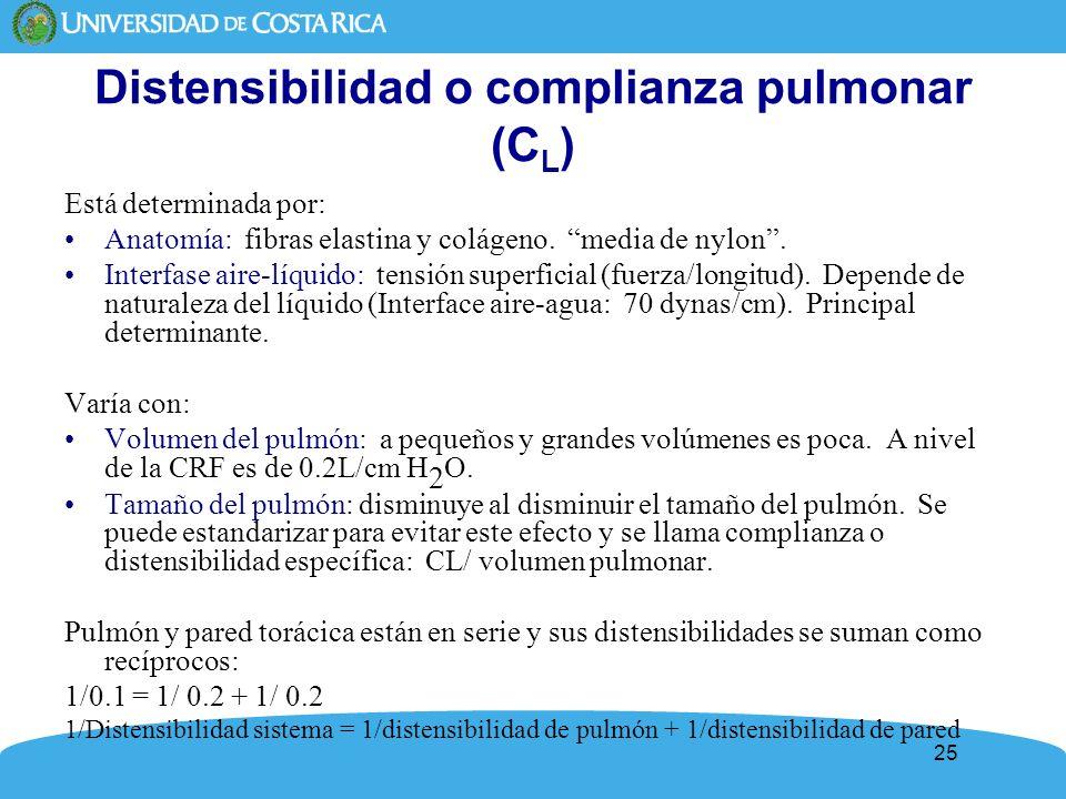 25 Distensibilidad o complianza pulmonar (C L ) Está determinada por: Anatomía: fibras elastina y colágeno. media de nylon. Interfase aire-líquido: te
