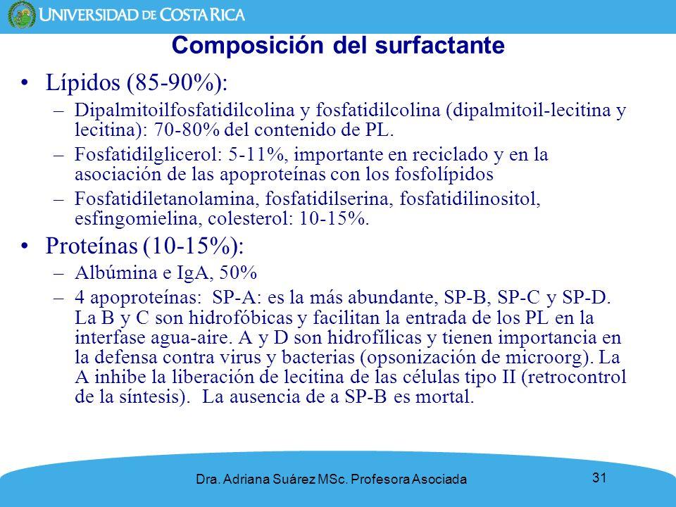 31 Composición del surfactante Lípidos (85-90%): –Dipalmitoilfosfatidilcolina y fosfatidilcolina (dipalmitoil-lecitina y lecitina): 70-80% del conteni