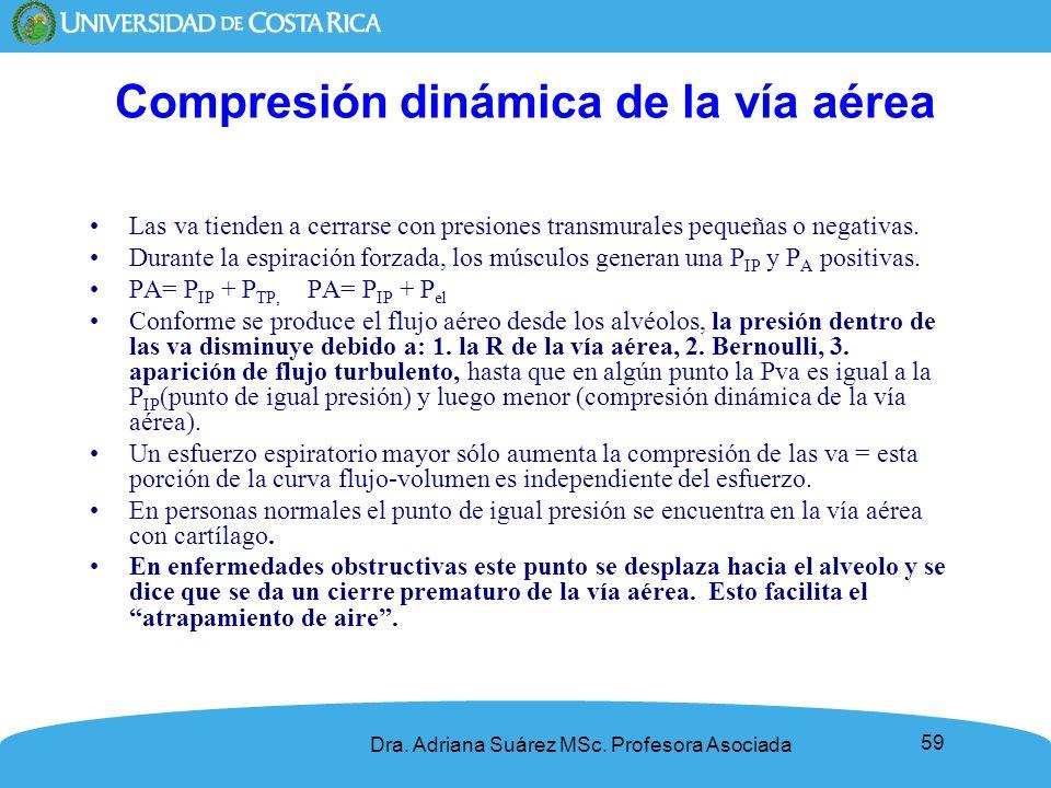 59 Compresión dinámica de la vía aérea Las va tienden a cerrarse con presiones transmurales pequeñas o negativas. Durante la espiración forzada, los m