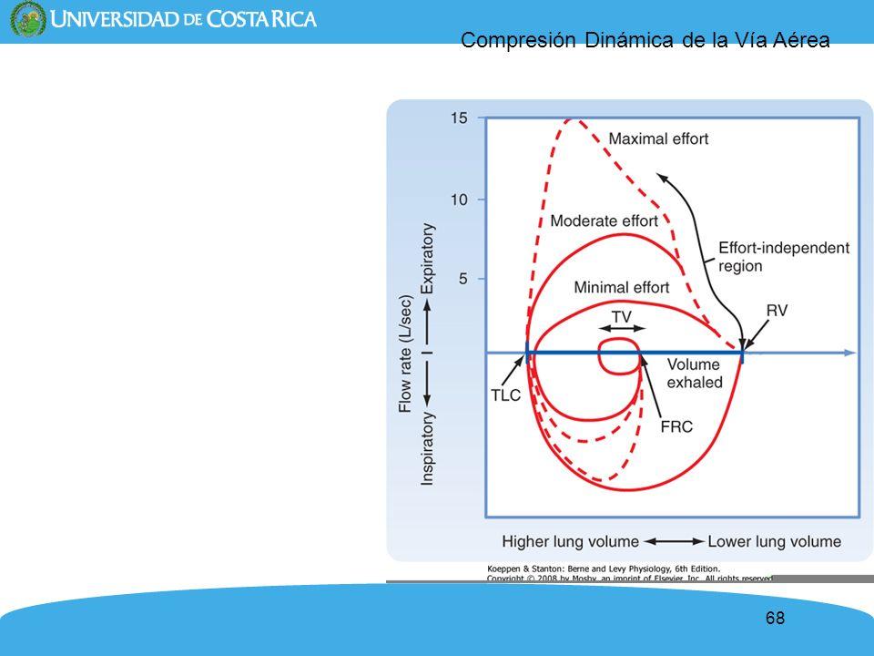 68 Compresión Dinámica de la Vía Aérea