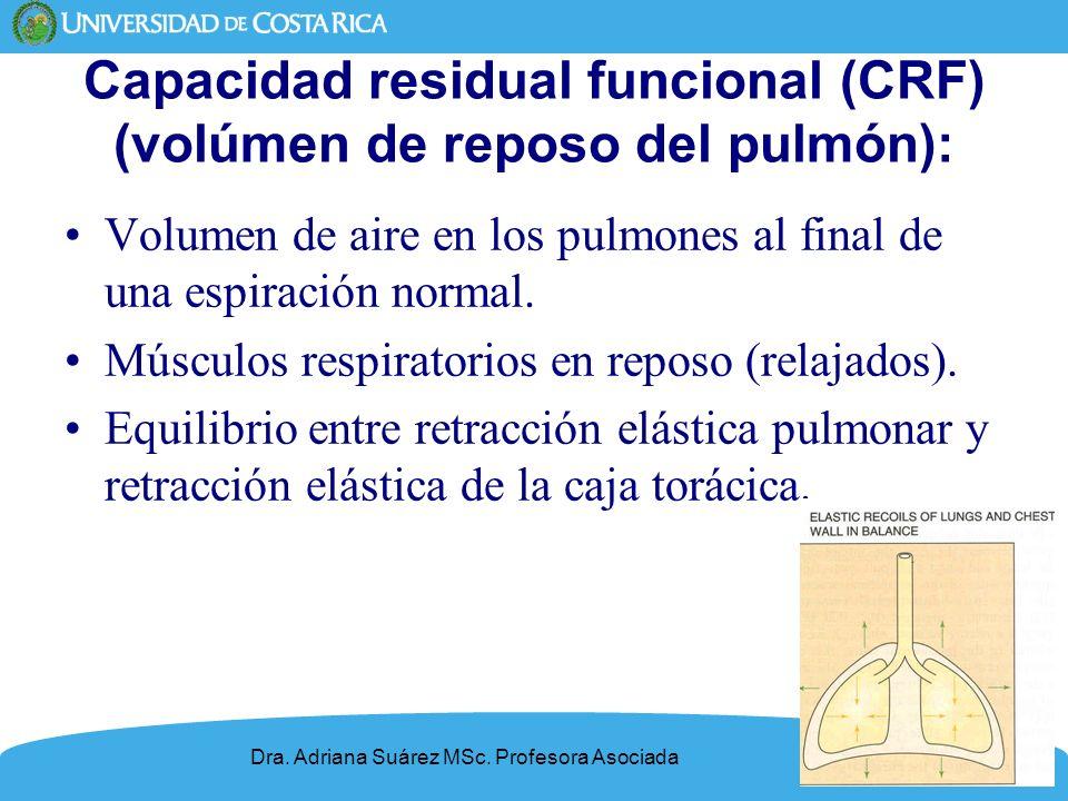 8 Capacidad residual funcional (CRF) (volúmen de reposo del pulmón): Volumen de aire en los pulmones al final de una espiración normal. Músculos respi