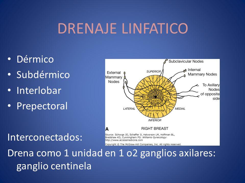 Dérmico Subdérmico Interlobar Prepectoral Interconectados: Drena como 1 unidad en 1 o2 ganglios axilares: ganglio centinela DRENAJE LINFATICO