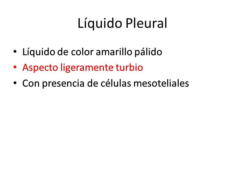 Líquido Pleural Líquido de color amarillo pálido Aspecto ligeramente turbio Con presencia de células mesoteliales Líquido de color amarillo pálido Asp