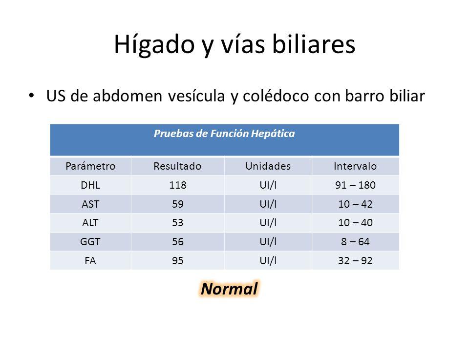 Hígado y vías biliares US de abdomen vesícula y colédoco con barro biliar Pruebas de Función Hepática ParámetroResultadoUnidadesIntervalo DHL118UI/l91