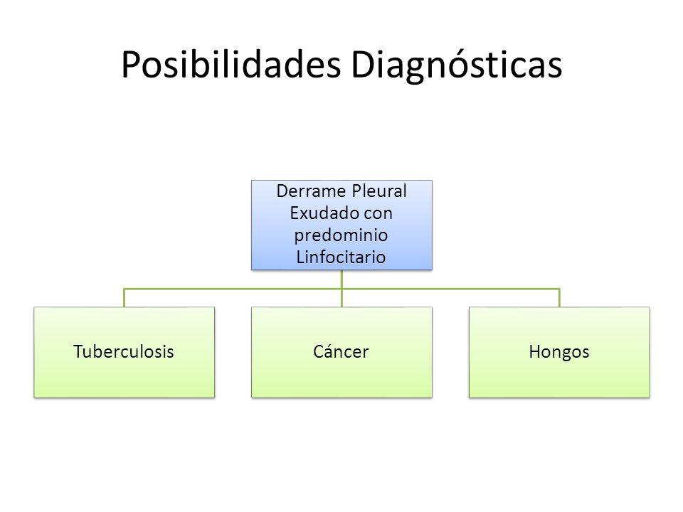 Posibilidades Diagnósticas Derrame Pleural Exudado con predominio Linfocitario TuberculosisCáncerHongos