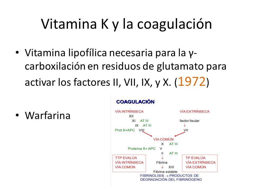 Vitamina K y la coagulación Vitamina lipofílica necesaria para la γ- carboxilación en residuos de glutamato para activar los factores II, VII, IX, y X