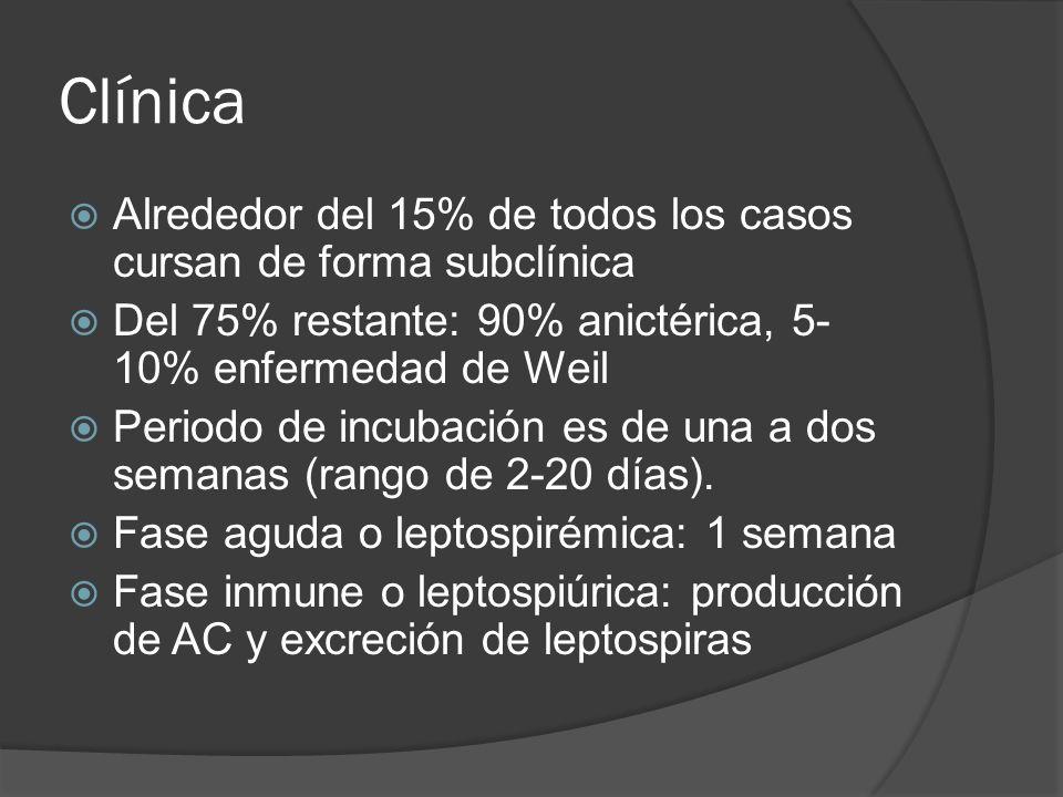 Clínica Alrededor del 15% de todos los casos cursan de forma subclínica Del 75% restante: 90% anictérica, 5- 10% enfermedad de Weil Periodo de incubac