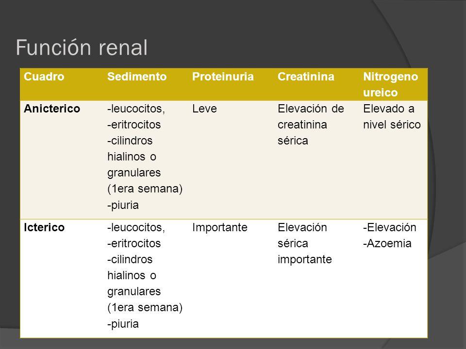 Función renal CuadroSedimentoProteinuriaCreatinina Nitrogeno ureico Anicterico -leucocitos, -eritrocitos -cilindros hialinos o granulares (1era semana